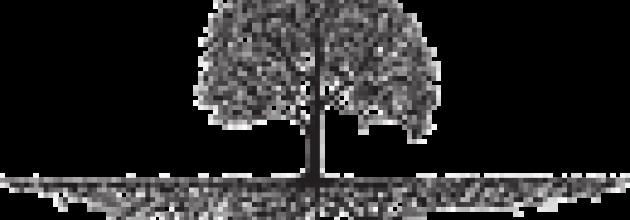 cropped-squaretree1301.png